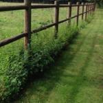 Créations - Clôture - Rigide - Gamme Équestre - Green Perspective